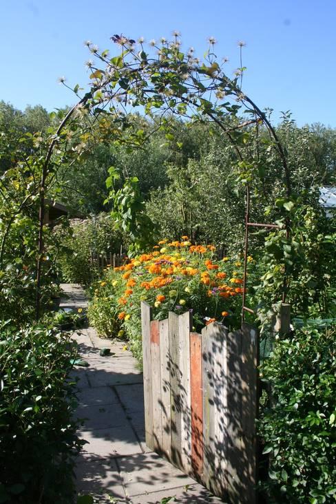 Carla Wilhelm:  tarz Bahçe