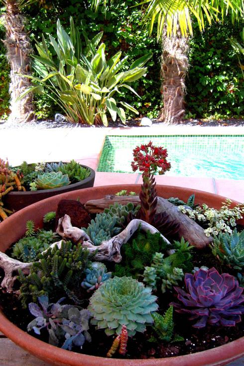 Castelldefels-Dàlia: Jardines de estilo  de Simbiosi Estudi de Paisatgisme
