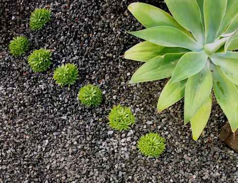 Detalles: Jardines de estilo moderno de Simbiosi Estudi de Paisatgisme