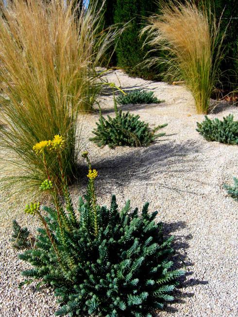 Detalles: Jardines de estilo  de Simbiosi Estudi