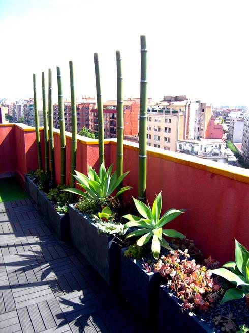 Barcelona-Meridiana: Jardines de estilo moderno de Simbiosi Estudi
