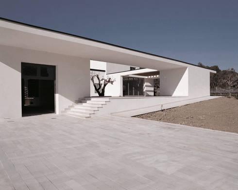 TAVERNA WINERY: Case in stile in stile Minimalista di ONSITESTUDIO