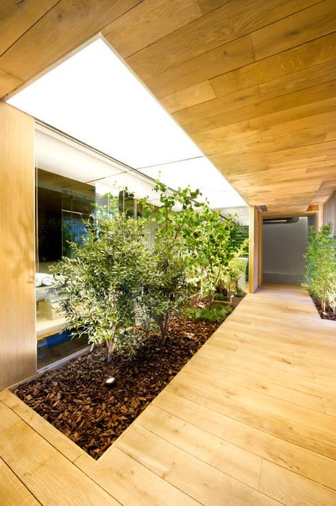 Bajo comercial convertido en loft (Terrassa): Jardines de invierno de estilo  de Egue y Seta