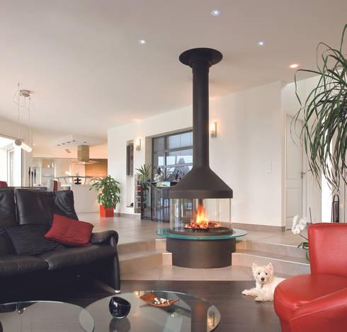 Meijifocus Fire: modern Living room by Diligence International Ltd