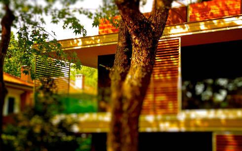 vialedante25.com:  in stile  di fabio ferrini architetto