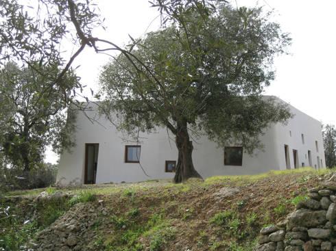 Casa al Mare, 2009: Case in stile  di MFA Architects