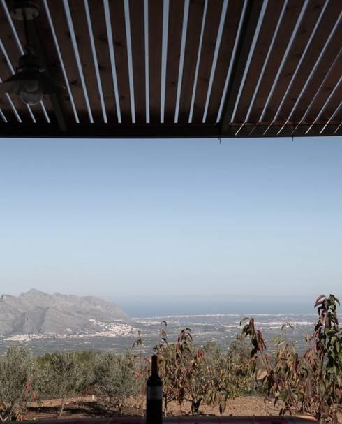 Refugio de montaña: Jardines de estilo  de Borja Garcia Studio