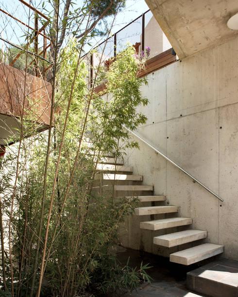 Vivienda en Tamariu: Vestíbulos, pasillos y escaleras de estilo  de Octavio Mestre Arquitectos