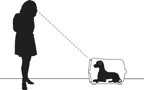 Trasportino Vision - rapporto Cane e padrone: Casa in stile  di ildoppiosegno