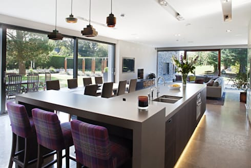 Des Ewing  Residential Architects: modern Kitchen by Des Ewing Residential Architects