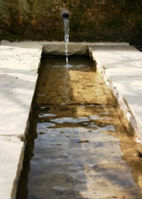 Water Feature Close Up: modern Garden by Bestall & Co Landscape Design Ltd