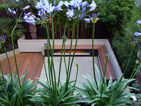 Garden viewed from roof terrace with Agapanthus flowers : modern Garden by MyLandscapes Garden Design