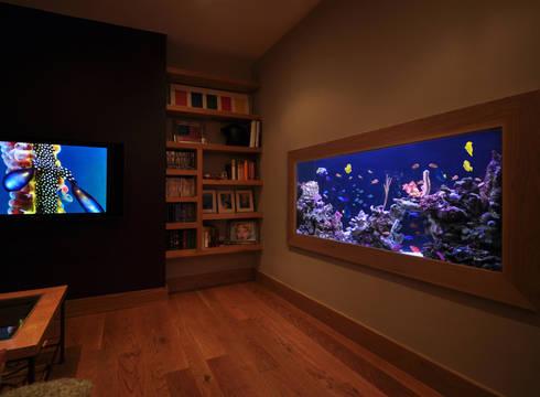 Aquarium in the city: tropical Living room by Aquarium Architecture
