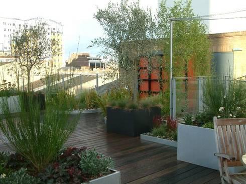 Garden In The Sky: industrial Garden by Cool Gardens Landscaping
