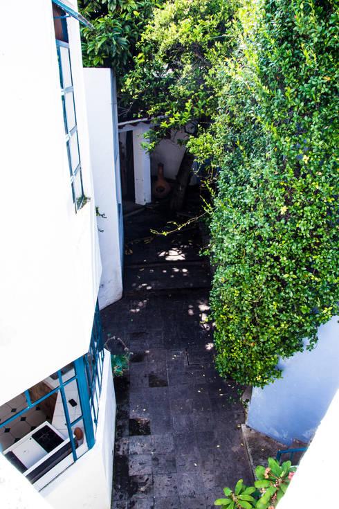 Conexión: Jardines de estilo mediterraneo por Mikkael Kreis Architects