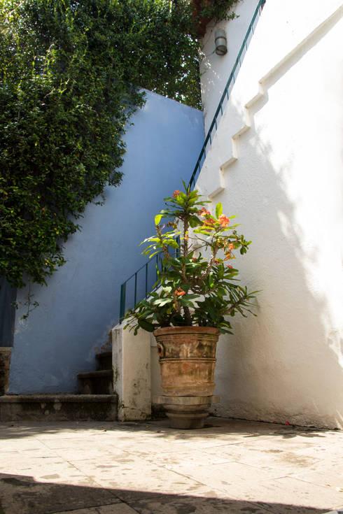 Garden  by Mikkael Kreis Architects