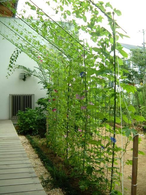 Jardines de estilo ecléctico por ARKSTUDIO一級建築士事務所