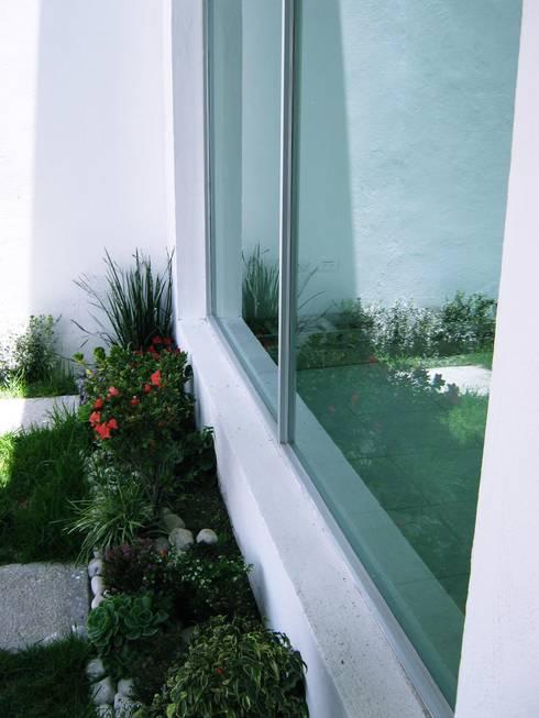 Casa LV: Jardines de estilo minimalista por ipalma arquitectos