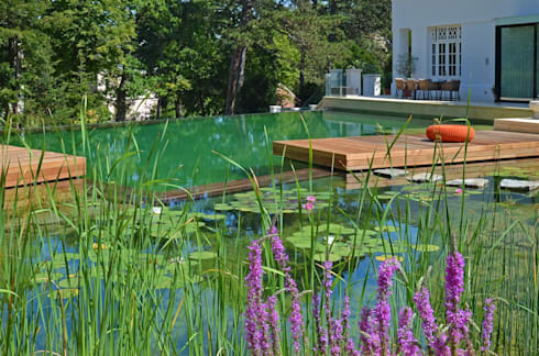Landschaftsgestaltung  BIOTOP Natural Pool - Classic chic by BIOTOP Landschaftsgestaltung ...