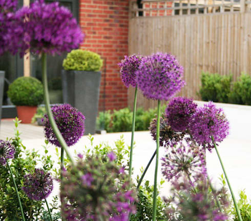 Town garden design: modern Garden by Bea Ray Garden Design Ltd