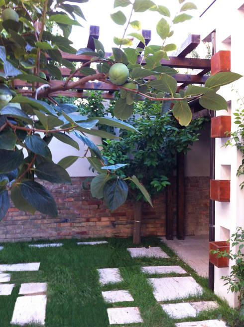 Like a small country house: Giardino in stile in stile Moderno di Laura Marini Architetto