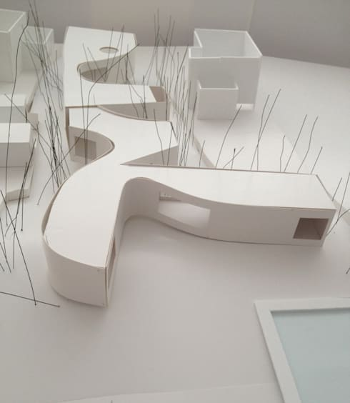 H house:   by paul kaloustian architect