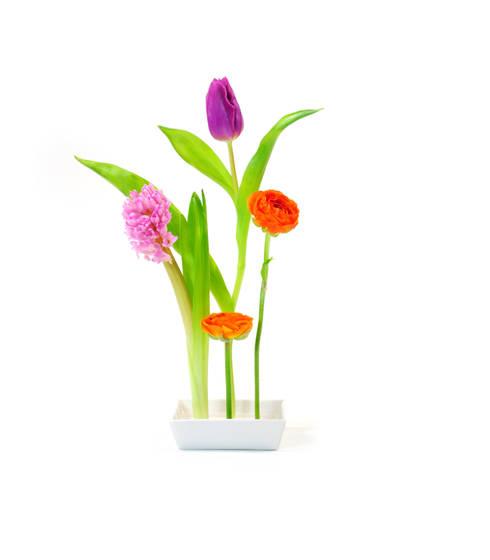 florida steck vase:  Esszimmer von XXD GmbH