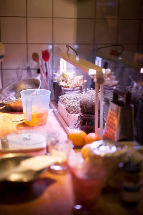 Projekty,  Kuchnia zaprojektowane przez Bulbo®