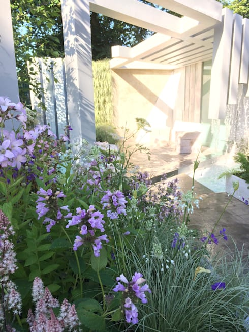 morning light on the garden :   by Alexandra Froggatt Design