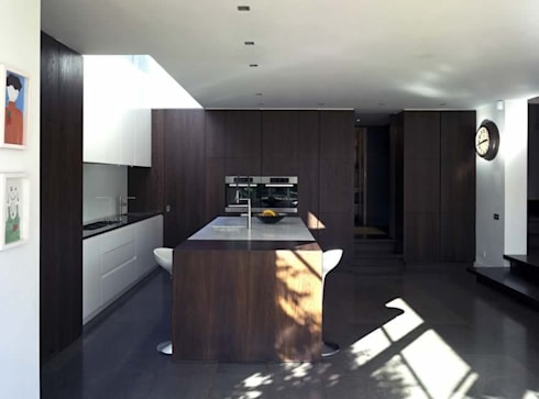 Lower Common South: modern Houses by Alan Higgs Architects