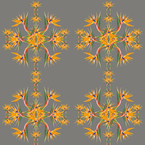 Bird of Paradise Wallpaper:  Walls & flooring by Lomas & Lomas