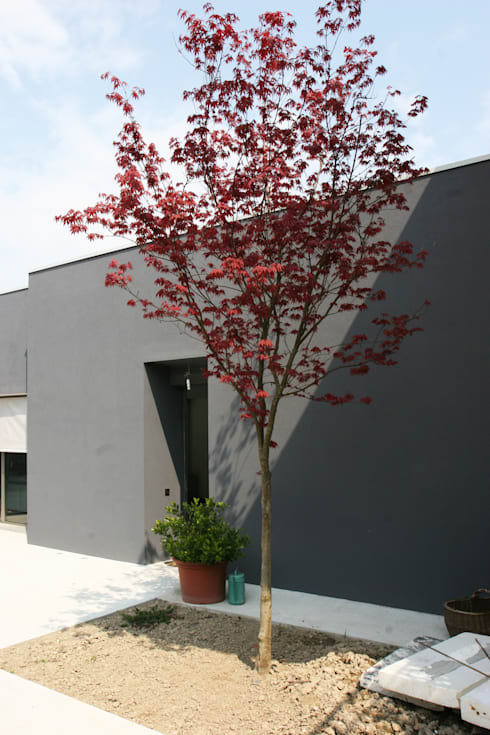 AMPLIAMENTO PIANO CASA: Case in stile  di Studio di Progettazione e Grafica Giorgio Da Villa