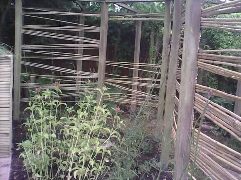 pea cane fencing:  Garden  by SD GARDEN DESIGNS