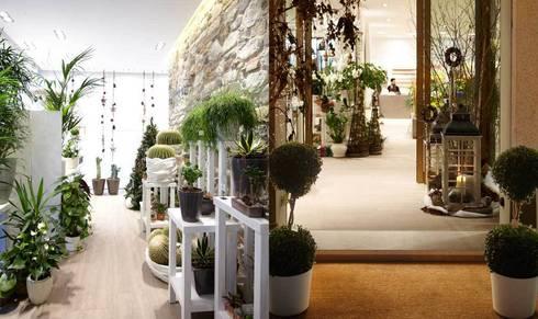 ZUBINI: Spazi commerciali in stile  di Flussocreativo design studio