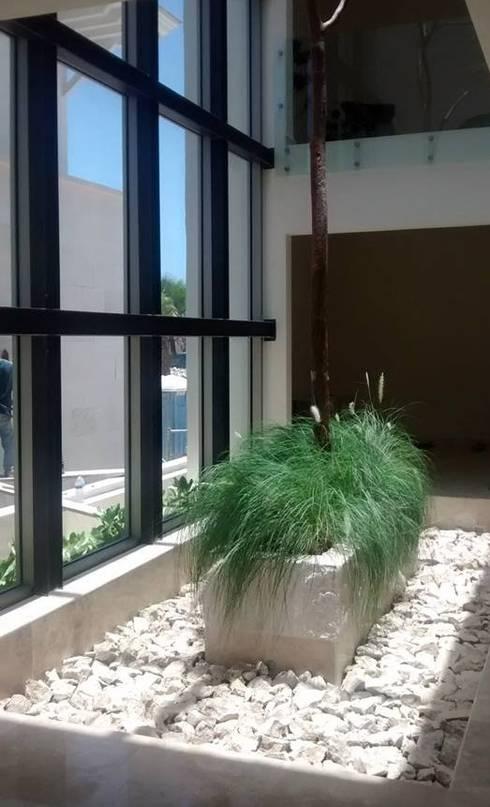 Domo/ Espejo de Agua: Jardines de invierno de estilo  por Vortex Arquitectos