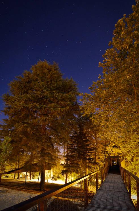TREE SNAKE HOUSES: Hotéis  por RA\\ Rebelo de Andrade
