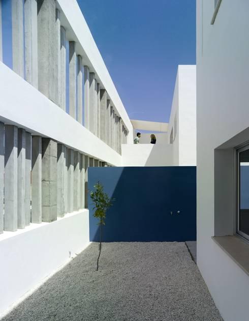 Patio del limonero:  de estilo  de gabriel verd arquitectos