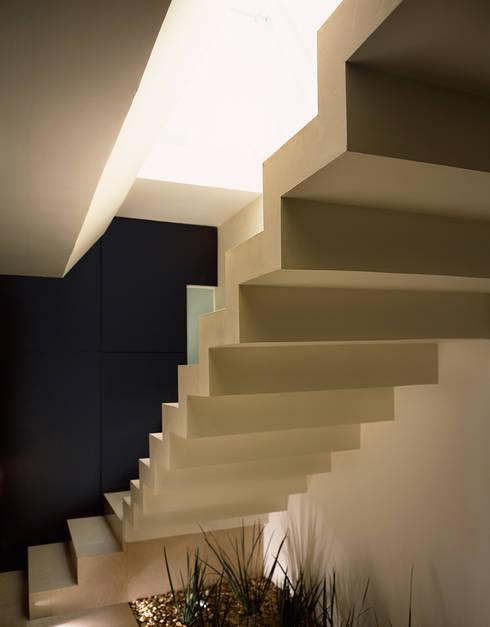 M House : Pasillos y recibidores de estilo  por Micheas Arquitectos