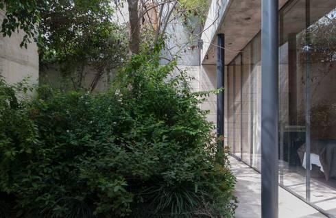 SPA JIVA: Jardines de estilo minimalista por Ambrosi I Etchegaray