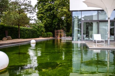 Design Gartenhaus gartenhaus gart zwei münchen design garten homify
