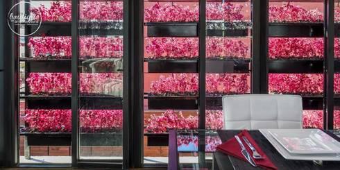 Estudio Coyoacan: Ventanas de estilo  por Boutique de Arquitectura  (Sonotectura + Refaccionaria)
