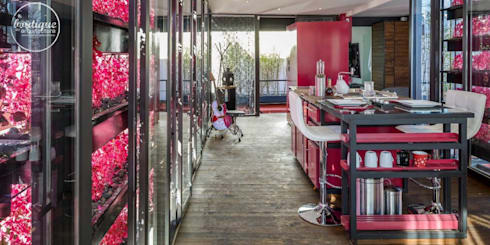 Estudio Coyoacan: Cocinas de estilo moderno por Boutique de Arquitectura  (Sonotectura + Refaccionaria)