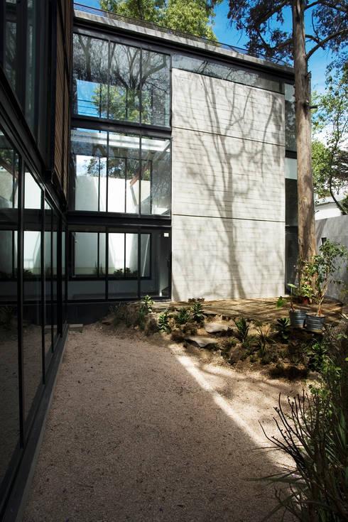 Casa B: Jardines de estilo  por Gaeta Springall Arquitectos