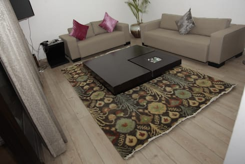 HMW - Living Room Project: classic Living room by Indus Shanti Carpets India Pvt Ltd