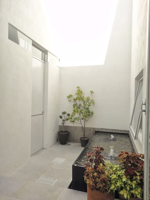 Casa Zaragoza: Jardines de estilo moderno por Abraham Cota Paredes Arquitecto