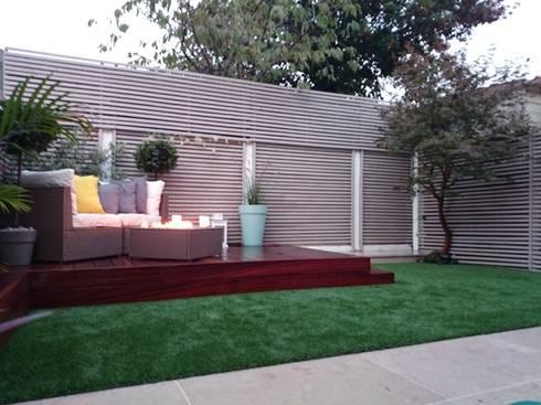 Small courtyard garden: modern Garden by Paul Newman Landscapes