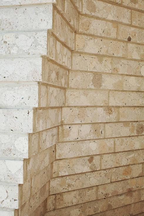 SHIRASU: ARAY Architectureが手掛けた壁です。