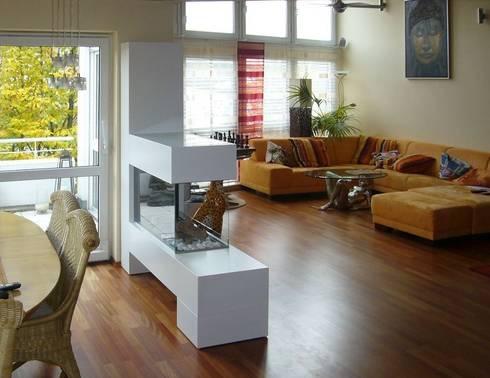 Aspect SPlan 21 K50 BE Moderne Wohnzimmer Von Kamin Design GmbH Co