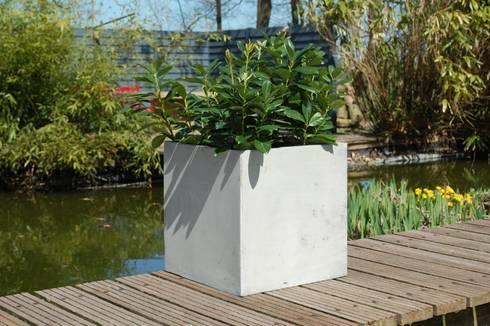 Pflanzkübel Fiberglas im Beton-Design von AE Trade Online | homify