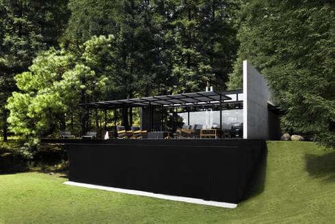 Toy-Box: Estudios y oficinas de estilo minimalista por grupoarquitectura